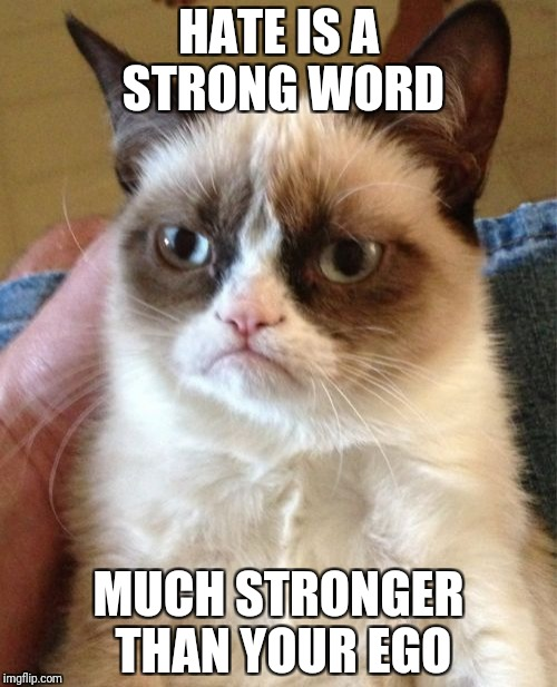 Grumpy Cat Meme | HATE IS A STRONG WORD MUCH STRONGER THAN YOUR EGO | image tagged in memes,grumpy cat | made w/ Imgflip meme maker