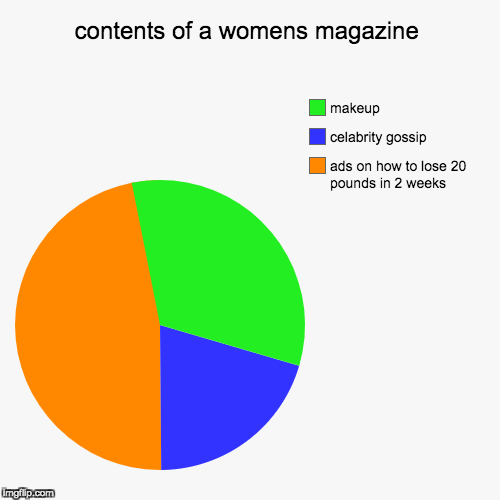contents of a womens magazine | ads on how to lose 20 pounds in 2 weeks, celabrity gossip, makeup | image tagged in funny,pie charts | made w/ Imgflip pie chart maker