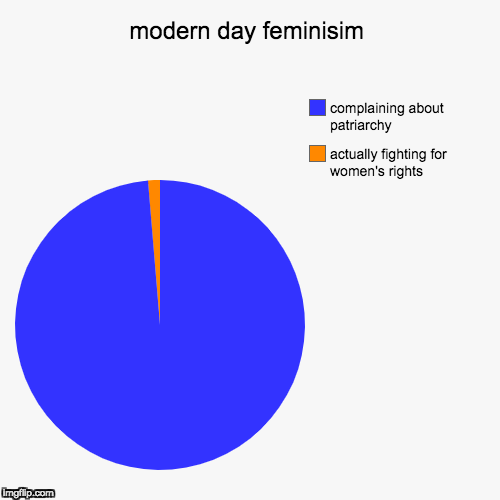 modern day feminisim | actually fighting for women's rights, complaining about patriarchy | image tagged in funny,pie charts | made w/ Imgflip pie chart maker