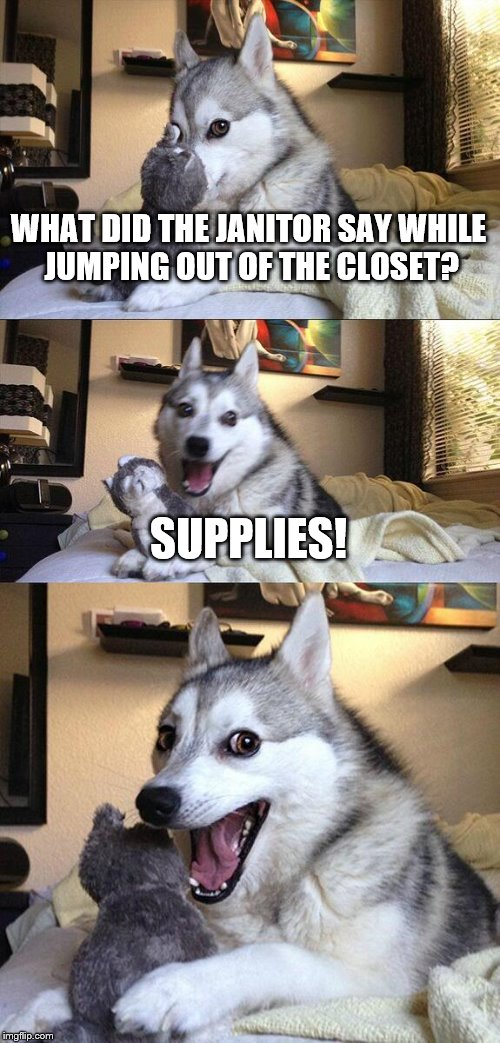 Bad Pun Dog Meme | WHAT DID THE JANITOR SAY WHILE JUMPING OUT OF THE CLOSET? SUPPLIES! | image tagged in memes,bad pun dog | made w/ Imgflip meme maker