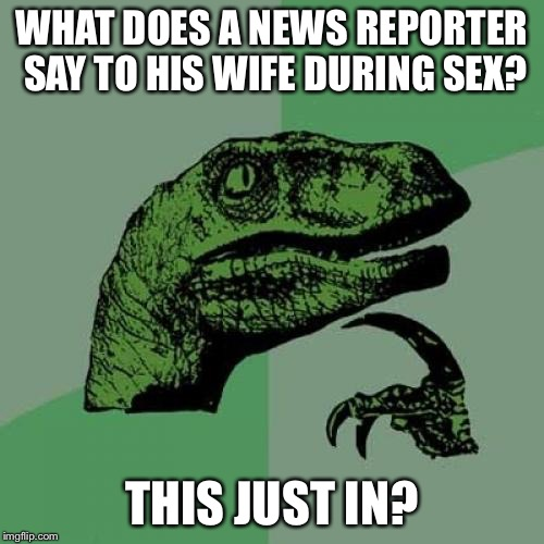 Philosoraptor Meme | WHAT DOES A NEWS REPORTER SAY TO HIS WIFE DURING SEX? THIS JUST IN? | image tagged in memes,philosoraptor | made w/ Imgflip meme maker