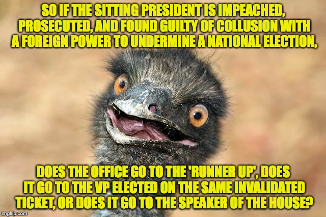 What's the process when a presidential election is invalidated?  Does anybody know? | SO IF THE SITTING PRESIDENT IS IMPEACHED, PROSECUTED, AND FOUND GUILTY OF COLLUSION WITH A FOREIGN POWER TO UNDERMINE A NATIONAL ELECTION, D | image tagged in surprised emu,memes,trump | made w/ Imgflip meme maker