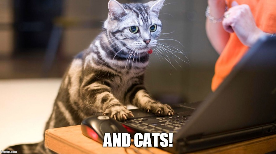 AND CATS! | made w/ Imgflip meme maker