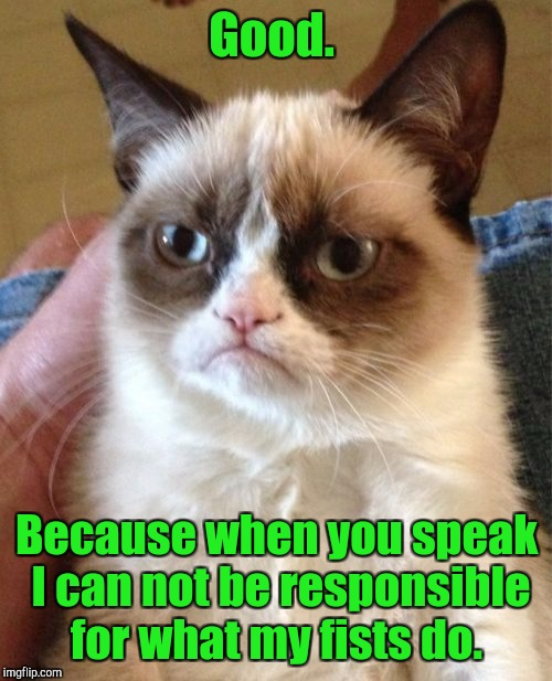 Grumpy Cat Meme | Good. Because when you speak I can not be responsible for what my fists do. | image tagged in memes,grumpy cat | made w/ Imgflip meme maker