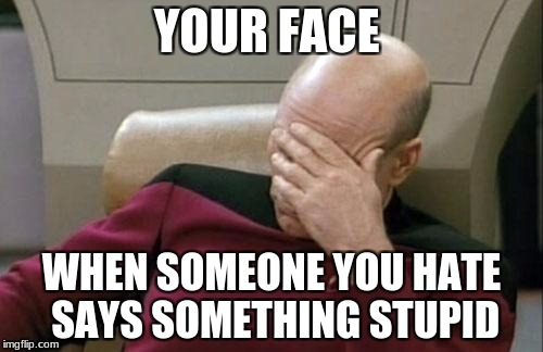 Captain Picard Facepalm Meme | YOUR FACE WHEN SOMEONE YOU HATE SAYS SOMETHING STUPID | image tagged in memes,captain picard facepalm | made w/ Imgflip meme maker