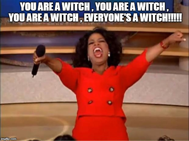 Oprah You Get A Meme | YOU ARE A WITCH , YOU ARE A WITCH , YOU ARE A WITCH , EVERYONE'S A WITCH!!!!! | image tagged in memes,oprah you get a | made w/ Imgflip meme maker