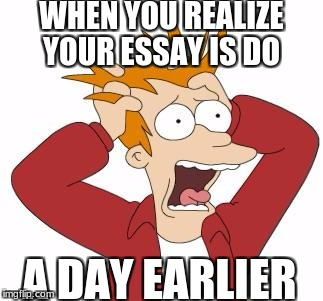 Fry Freaking Out | WHEN YOU REALIZE YOUR ESSAY IS DO A DAY EARLIER | image tagged in fry freaking out | made w/ Imgflip meme maker