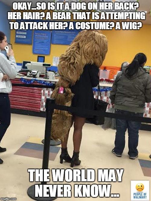 lady with U.S.O (unidentified sitting object) | OKAY...SO IS IT A DOG ON HER BACK? HER HAIR? A BEAR THAT IS ATTEMPTING TO ATTACK HER? A COSTUME? A WIG? THE WORLD MAY NEVER KNOW... | image tagged in bad hair day,how about no bear,dog hair,halloween is coming | made w/ Imgflip meme maker