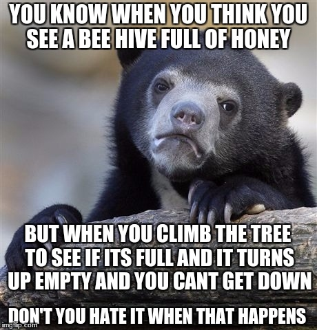 Confession Bear Meme | YOU KNOW WHEN YOU THINK YOU SEE A BEE HIVE FULL OF HONEY BUT WHEN YOU CLIMB THE TREE TO SEE IF ITS FULL AND IT TURNS UP EMPTY AND YOU CANT G | image tagged in memes,confession bear | made w/ Imgflip meme maker