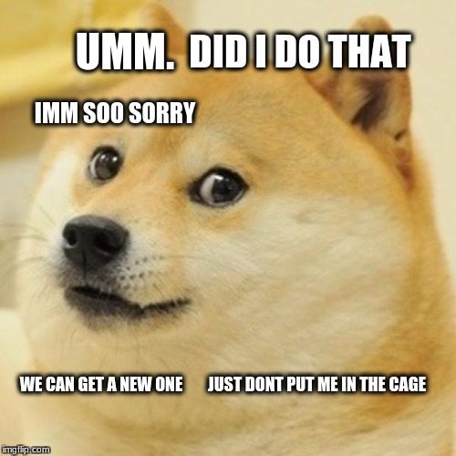 Doge Meme | UMM. DID I DO THAT IMM SOO SORRY WE CAN GET A NEW ONE JUST DONT PUT ME IN THE CAGE | image tagged in memes,doge | made w/ Imgflip meme maker