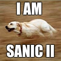 I am Doggo/ Sanic II | I AM SANIC II | image tagged in speedy doggo,sanic,memes,wtf,meme,funny | made w/ Imgflip meme maker