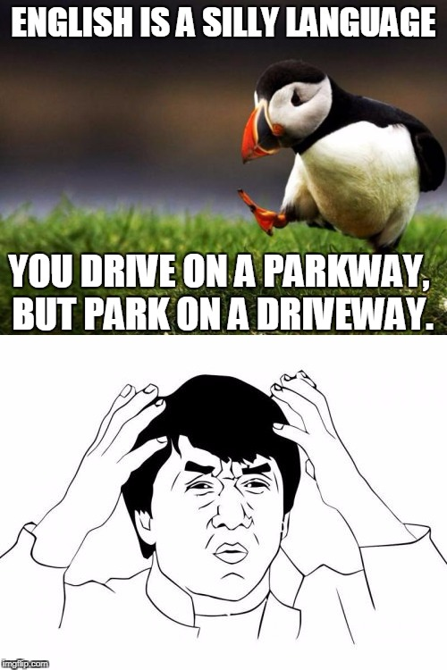 ENGLISH IS A SILLY LANGUAGE YOU DRIVE ON A PARKWAY, BUT PARK ON A DRIVEWAY. | image tagged in funny memes,unpopular opinion puffin,jackie chan wtf,memes | made w/ Imgflip meme maker