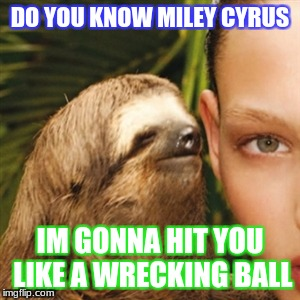 Whisper Sloth Meme | DO YOU KNOW MILEY CYRUS IM GONNA HIT YOU LIKE A WRECKING BALL | image tagged in memes,whisper sloth | made w/ Imgflip meme maker
