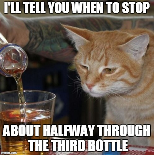 I'LL TELL YOU WHEN TO STOP ABOUT HALFWAY THROUGH THE THIRD BOTTLE | made w/ Imgflip meme maker