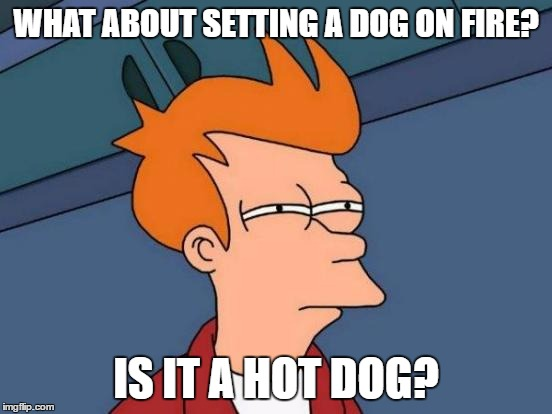 Futurama Fry Meme | WHAT ABOUT SETTING A DOG ON FIRE? IS IT A HOT DOG? | image tagged in memes,futurama fry | made w/ Imgflip meme maker