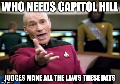 Picard Wtf Meme | WHO NEEDS CAPITOL HILL JUDGES MAKE ALL THE LAWS THESE DAYS | image tagged in memes,picard wtf | made w/ Imgflip meme maker