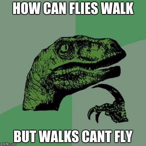 Philosoraptor Meme | HOW CAN FLIES WALK BUT WALKS CANT FLY | image tagged in memes,philosoraptor | made w/ Imgflip meme maker