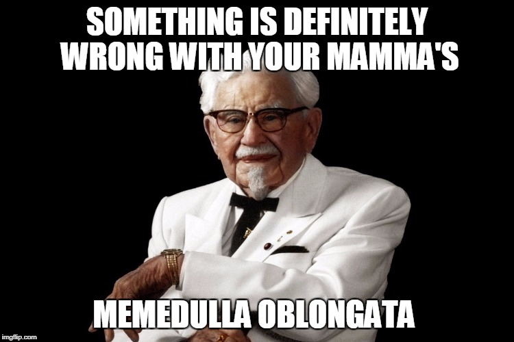 SOMETHING IS DEFINITELY WRONG WITH YOUR MAMMA'S MEMEDULLA OBLONGATA | made w/ Imgflip meme maker