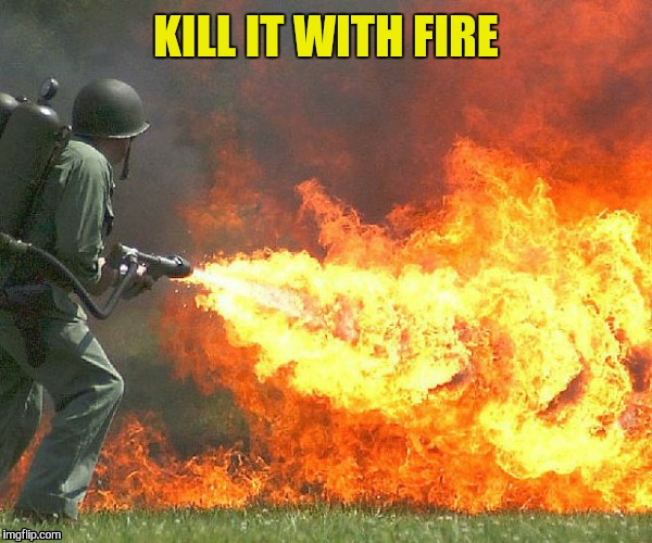 KILL IT WITH FIRE | made w/ Imgflip meme maker