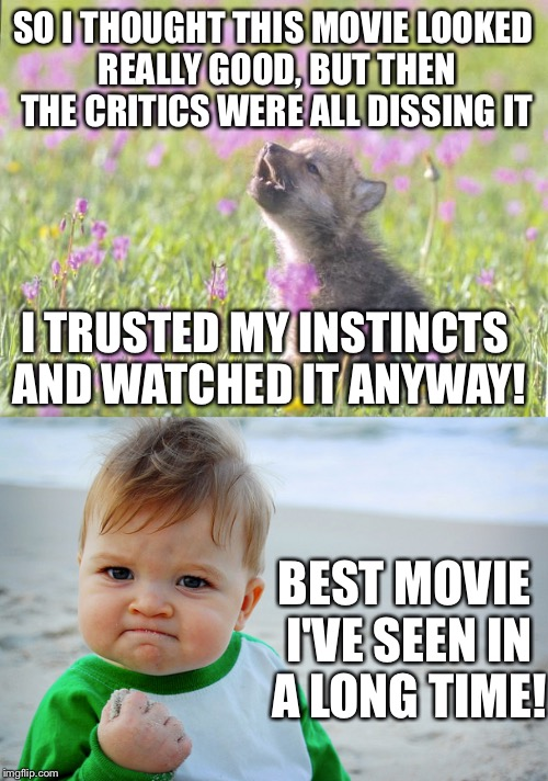 Movie Week! | SO I THOUGHT THIS MOVIE LOOKED REALLY GOOD, BUT THEN THE CRITICS WERE ALL DISSING IT I TRUSTED MY INSTINCTS AND WATCHED IT ANYWAY! BEST MOVI | image tagged in baby insanity wolf,movie week | made w/ Imgflip meme maker