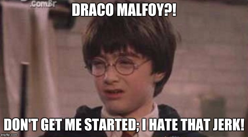 DRACO MALFOY?! DON'T GET ME STARTED; I HATE THAT JERK! | image tagged in harry potter | made w/ Imgflip meme maker