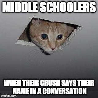 Ceiling Cat | MIDDLE SCHOOLERS WHEN THEIR CRUSH SAYS THEIR NAME IN A CONVERSATION | image tagged in memes,ceiling cat | made w/ Imgflip meme maker