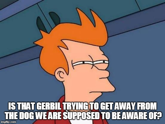 Futurama Fry Meme | IS THAT GERBIL TRYING TO GET AWAY FROM THE DOG WE ARE SUPPOSED TO BE AWARE OF? | image tagged in memes,futurama fry | made w/ Imgflip meme maker