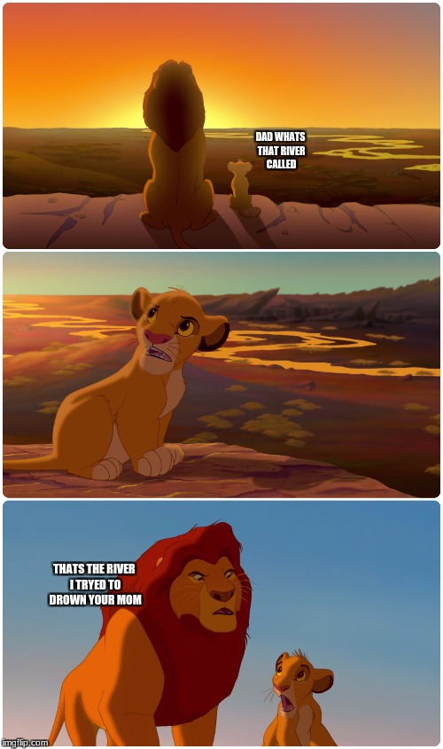 Lion King Meme | DAD WHATS THAT RIVER CALLED THATS THE RIVER I TRYED TO DROWN YOUR MOM | image tagged in lion king meme | made w/ Imgflip meme maker