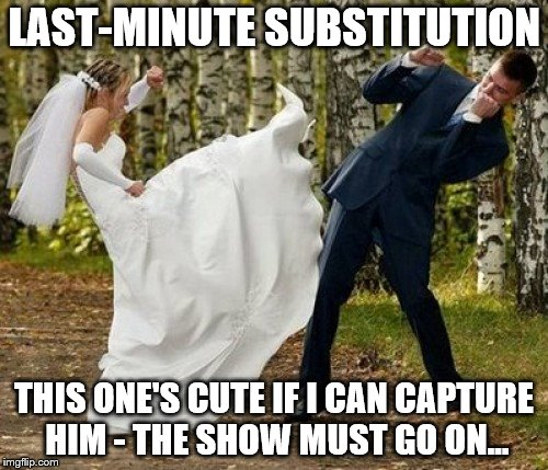 Angry Bride | LAST-MINUTE SUBSTITUTION THIS ONE'S CUTE IF I CAN CAPTURE HIM - THE SHOW MUST GO ON... | image tagged in memes,angry bride | made w/ Imgflip meme maker