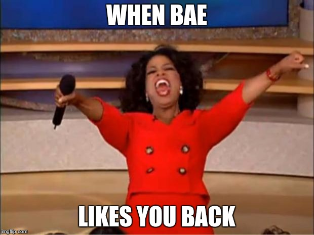 Oprah You Get A Meme | WHEN BAE LIKES YOU BACK | image tagged in memes,oprah you get a | made w/ Imgflip meme maker