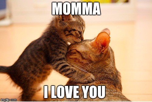 MOMMA I LOVE YOU | image tagged in momma | made w/ Imgflip meme maker