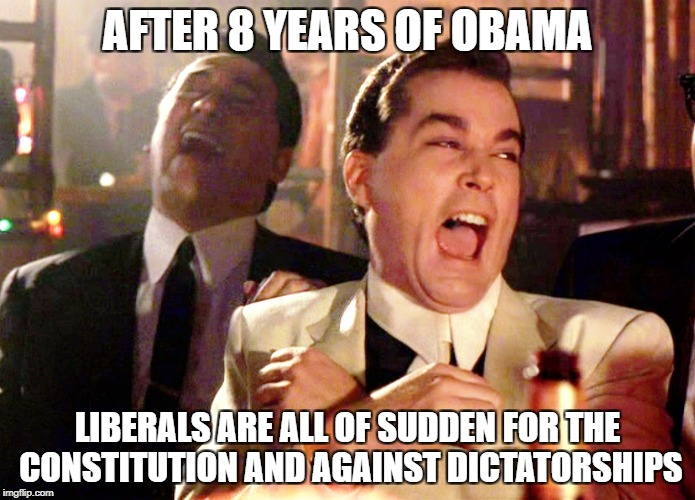 Good Fellas Hilarious | AFTER 8 YEARS OF OBAMA LIBERALS ARE ALL OF SUDDEN FOR THE CONSTITUTION AND AGAINST DICTATORSHIPS | image tagged in memes,good fellas hilarious,libtards,liberal logic,liberal hypocrisy,college liberal | made w/ Imgflip meme maker