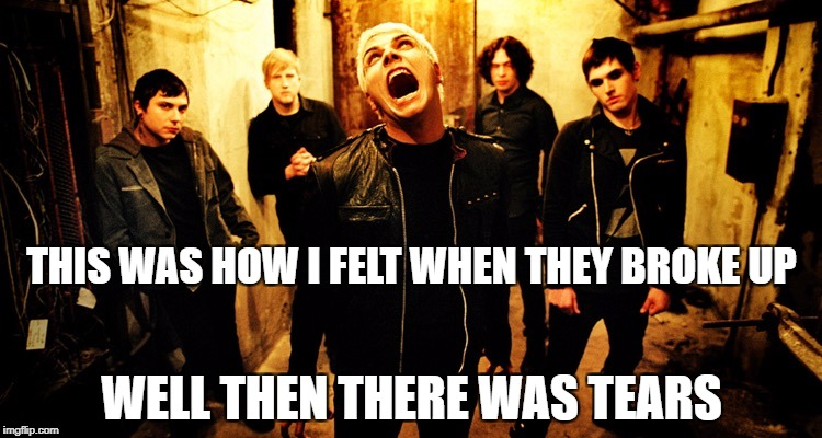 My chemical romance | THIS WAS HOW I FELT WHEN THEY BROKE UP WELL THEN THERE WAS TEARS | image tagged in my chemical romance | made w/ Imgflip meme maker