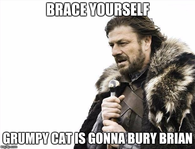 Brace Yourselves X is Coming Meme | BRACE YOURSELF GRUMPY CAT IS GONNA BURY BRIAN | image tagged in memes,brace yourselves x is coming | made w/ Imgflip meme maker