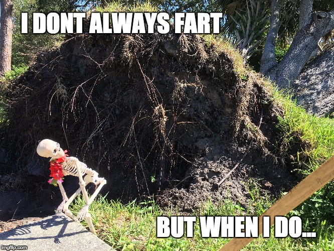 I dont always fart, but when I do | I DONT ALWAYS FART BUT WHEN I DO... | image tagged in fart,skeleton,humor,fart jokes | made w/ Imgflip meme maker