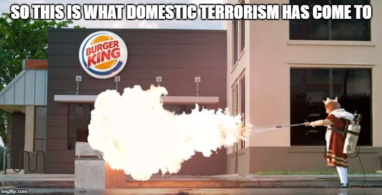 Don't mess with the best | SO THIS IS WHAT DOMESTIC TERRORISM HAS COME TO | image tagged in memes,burger king,terrorist,flamethrower,burger,idk | made w/ Imgflip meme maker