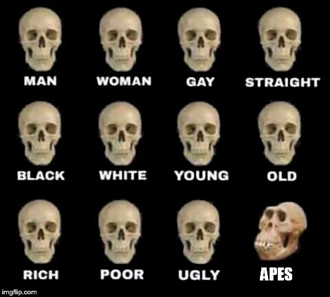 APES | image tagged in man woman gay straight skull,ape,apes | made w/ Imgflip meme maker