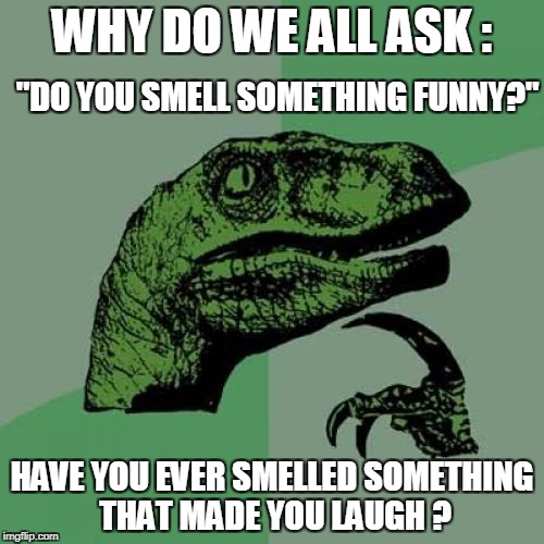"No, but I smell something stanky!!! | WHY DO WE ALL ASK : HAVE YOU EVER SMELLED SOMETHING THAT MADE YOU LAUGH ? ""DO YOU SMELL SOMETHING FUNNY?"" 