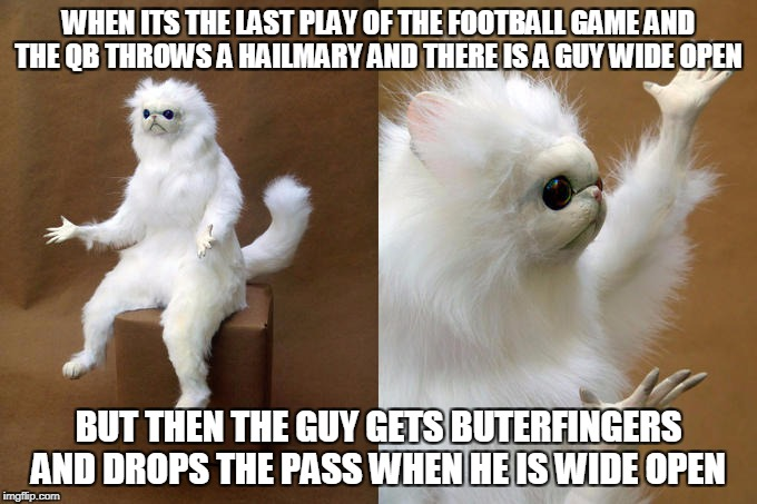 Persian Cat Room Guardian Meme | WHEN ITS THE LAST PLAY OF THE FOOTBALL GAME AND THE QB THROWS A HAILMARY AND THERE IS A GUY WIDE OPEN BUT THEN THE GUY GETS BUTERFINGERS AND | image tagged in memes,persian cat room guardian | made w/ Imgflip meme maker
