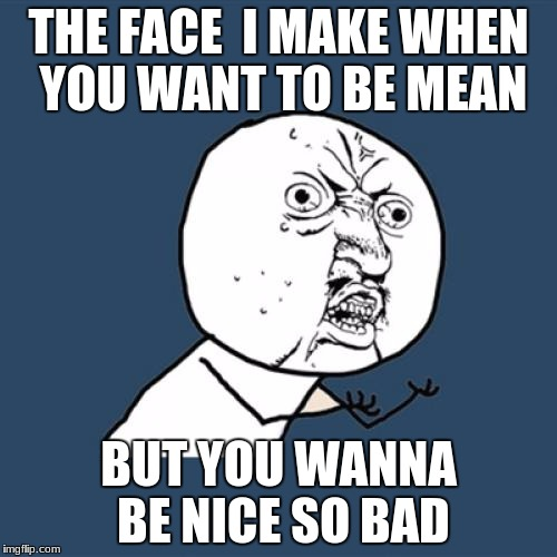 Y U No Meme | THE FACE  I MAKE WHEN YOU WANT TO BE MEAN BUT YOU WANNA BE NICE SO BAD | image tagged in memes,y u no | made w/ Imgflip meme maker
