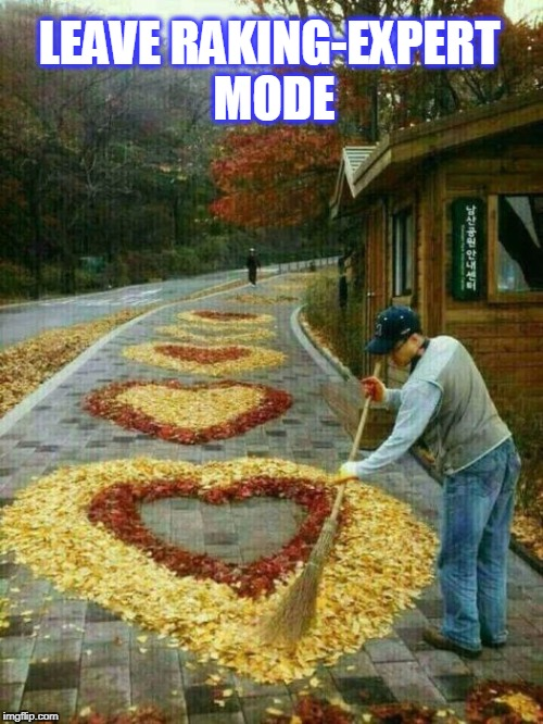 wow | LEAVE RAKING-EXPERT MODE | image tagged in rake leaves expert,leaves,fall | made w/ Imgflip meme maker