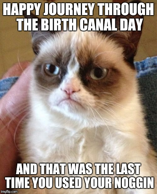 If Grumpy Cat We're To Make A Birthday Greeting... | HAPPY JOURNEY THROUGH THE BIRTH CANAL DAY AND THAT WAS THE LAST TIME YOU USED YOUR NOGGIN | image tagged in memes,grumpy cat,birthday | made w/ Imgflip meme maker