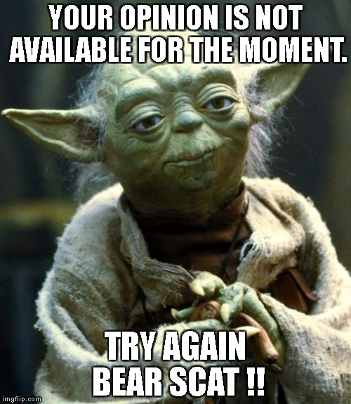 Star Wars Yoda Meme | YOUR OPINION IS NOT AVAILABLE FOR THE MOMENT. TRY AGAIN BEAR SCAT !! | image tagged in memes,star wars yoda | made w/ Imgflip meme maker