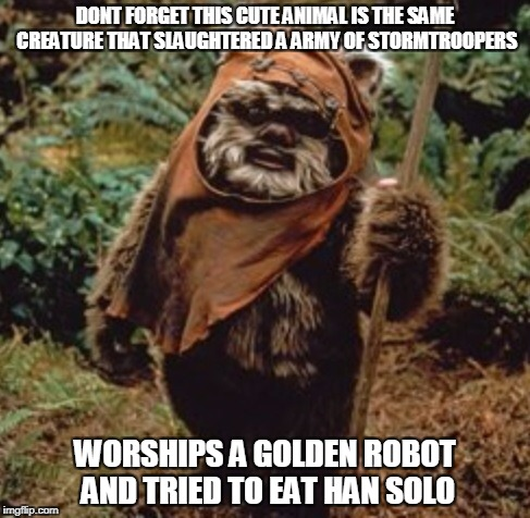 DONT FORGET THIS CUTE ANIMAL IS THE SAME CREATURE THAT SLAUGHTERED A ARMY OF STORMTROOPERS WORSHIPS A GOLDEN ROBOT AND TRIED TO EAT HAN SOLO | image tagged in star wars | made w/ Imgflip meme maker