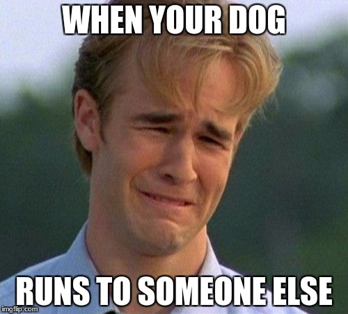 1990s First World Problems Meme | WHEN YOUR DOG RUNS TO SOMEONE ELSE | image tagged in memes,1990s first world problems | made w/ Imgflip meme maker