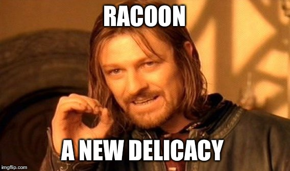 One Does Not Simply Meme | RACOON A NEW DELICACY | image tagged in memes,one does not simply | made w/ Imgflip meme maker