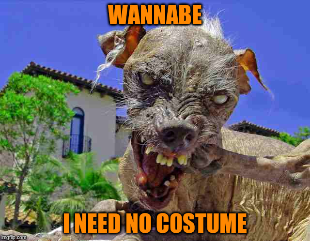 WANNABE I NEED NO COSTUME | made w/ Imgflip meme maker