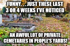 HALLOWEEN | FUNNY. . . JUST THESE LAST 3 OR 4 WEEKS I'VE NOTICED AN AWFUL LOT OF PRIVATE CEMETARIES IN PEOPLE'S YARDS! | image tagged in huh,halloween,coincidence i think not | made w/ Imgflip meme maker