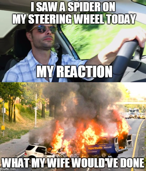 I SAW A SPIDER ON MY STEERING WHEEL TODAY WHAT MY WIFE WOULD'VE DONE MY REACTION | image tagged in driving,wife | made w/ Imgflip meme maker