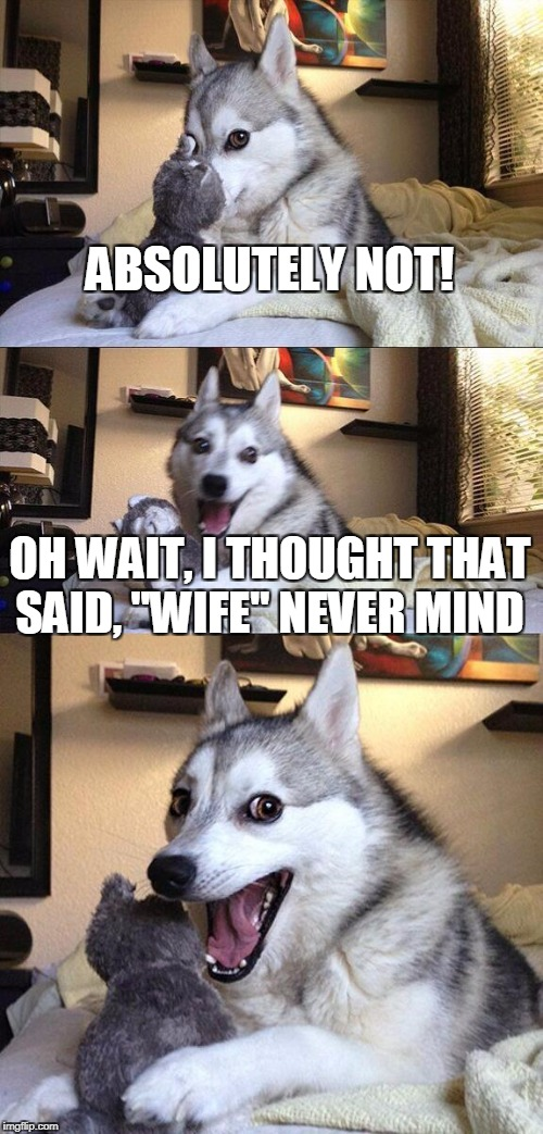 "Bad Pun Dog Meme | ABSOLUTELY NOT! OH WAIT, I THOUGHT THAT SAID, ""WIFE"" NEVER MIND 